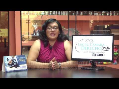 Programa 11 - Modificatorias del cohecho activo y pasivo - Luces Cámara Derecho - EGACAL