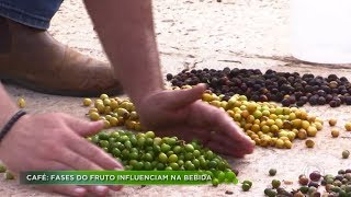 Agro Record na íntegra - 19/Abril/2020 - Bloco 2