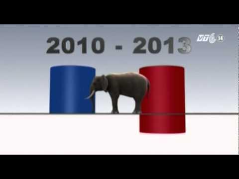 Voi châu Phi trước nguy cơ tuyệt chủng