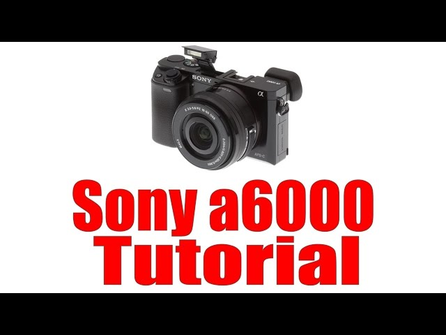 how to download apps on sony a6000