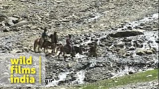 Amarnath Yatra - A Popular Yatra Destination For Hindus