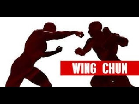 Aikido vs Wing Chun sparring. Спарринги. 26.09.18