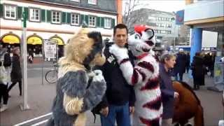 Mainz Germany  city pictures gallery : Fursuit walk in inner city Mainz (Germany)