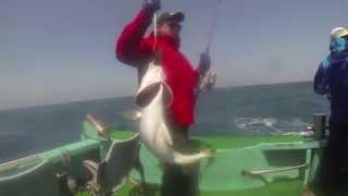 Морская рыбалка. Ловим, ловим лакедру! Чеджу,май 2013.
