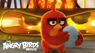The Angry Birds: Take a Stand