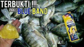 Video Umpan Mancing Ikan Nila Paling Ampuh (bisa untuk semua jenis ikan) umpan super jitu MP3, 3GP, MP4, WEBM, AVI, FLV Maret 2019