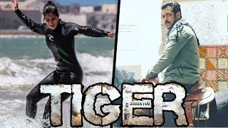 Salman Khan Rides Horse In Morocco, Katrina's Dangerous WATER SURFING In Morocco For Tiger Zinda Hai☞  Check All Bollywood Latest Update on our Channel & Subscribe  - http://bit.ly/SubscribeMoviezAdda ☞  Follow us on Twitter http://goo.gl/Z4wno5☞  Like us on Facebook https://goo.gl/8Kvkhr☞  Circle us on G+ https://plus.google.com/118018009657043521720☞  Follow us on Instagram http://goo.gl/gSysfH