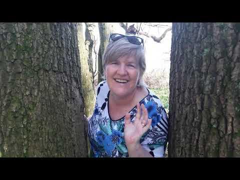Lachen-rund-um-den-Baum | Lachen ohne Grund