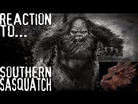 My Reaction to Lost Tapes: Southern Sasquatch