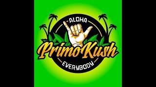 Chillin With Primo #469- Mary Jane 101.feat Medically Fit & Medical Veteran (Live) 7pmPT by Primo Kush