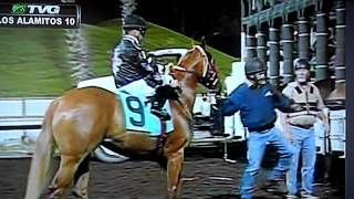 Los Alamitos (CA) United States  City new picture : Qualification at ED BURKE MILLION FUTURITY EN LOS ALAMITOS