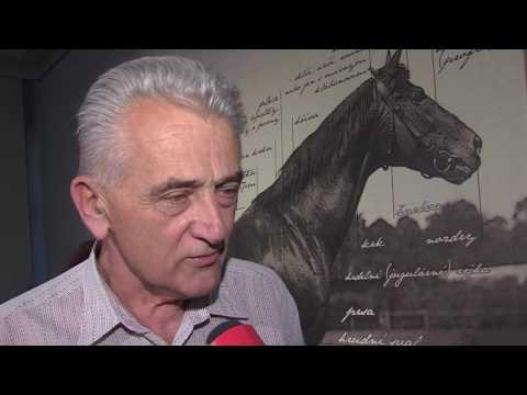 TVS: Napajedla - Hřebčín slaví 130 let