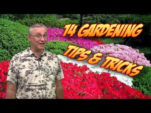 Garden tips - In this video you'll find 14 useful tips to make growing vegetables and gardening easier. From how to keep dirt out of your fingernails while gardening, to w...