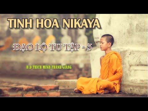 Tinh Hoa NIKAYA – Đạo Lộ Tu Tập 3 - ĐĐ.Thích Minh Thành