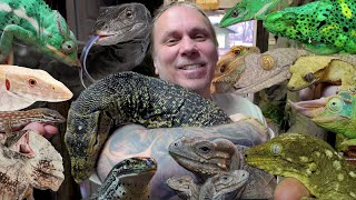 ALL MY LIZARDS IN ONE VIDEO!!   BRIAN BARCZYK by Brian Barczyk