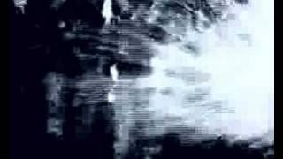 COSTANZA : LAZY REBEL - visuals by Embrio.net & Costanza
