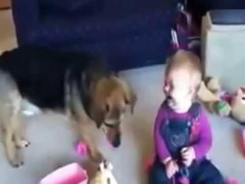 Vui cười, hài hước - trẻ em và các thú cưng