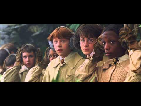 Harry Potter 2 - Les Mandragores (Scène Culte)