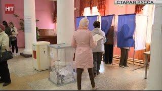 Голосование прошло в Старорусском и Шимском районах