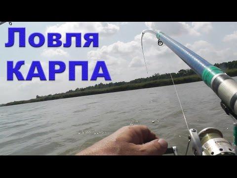 ловля карпа на реке с лодки видео