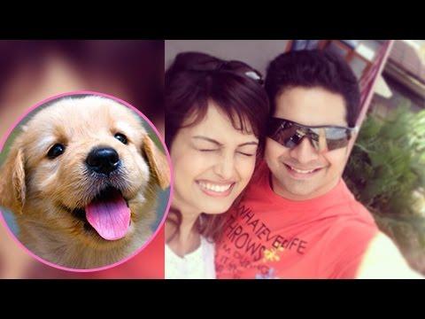 Karan Mehra - Nisha Rawal CUTE MOMENTS With Puppie