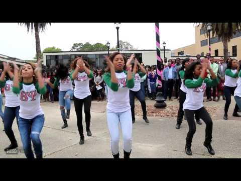Beta Psi Chapter Of Alpha Kappa Alpha Yard Show Spring 2014