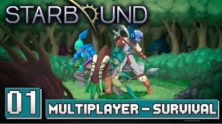 Gameplay de Starbound Multiplayer/Coop na verssão 1.0 com MetalBear e o Canal do Void. Dificultade Survival, onde você...