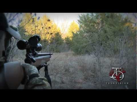 .25 cal airgun - Hog hunt with the new Benjamin Marauder PCP air rifle. .25 cal air rifle takes down a 100lb hog!