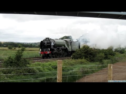 LNER A1 60163 Tornado on the Torbay Express at Powderham ...