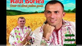 Raul Borlea   Imi Place Viata La Stana