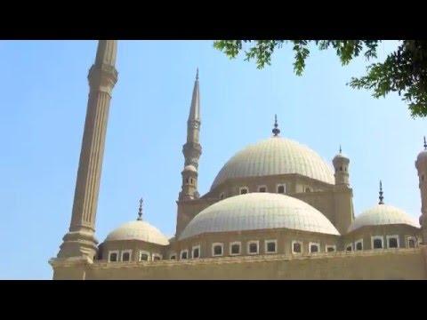 SOI Video 2008