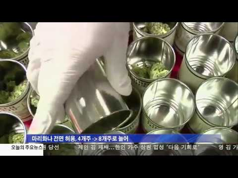 미 대선 '마리화나의 승리 '  11.9.16 KBS America News