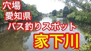 家下川穴場愛知県豊田市バス釣りスポット