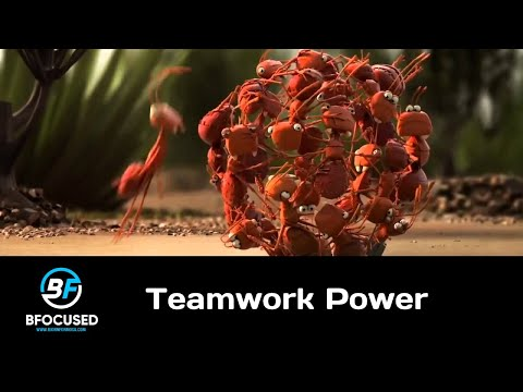 Funny Motivational Video Teamwork at its Best. Together Everyone Achieves More Animated