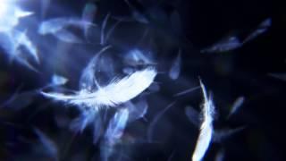 『絶狼<ZERO>-BLACK BLOOD-』オープニング映像