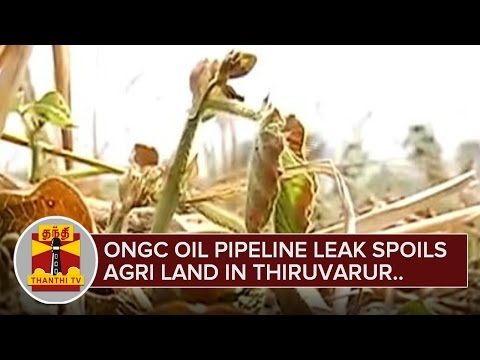 ONGC-Oil-Pipeline-Leak-Spoils-Agriculture-Land-in-Thiruvarur-Detailed-Report-Thanthi-TV-09-03-2016