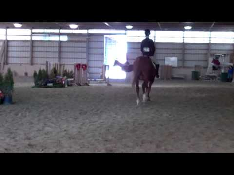 Sara Held's Third-Place Ride in Beginning Walk Trot Canter - 2/23/14