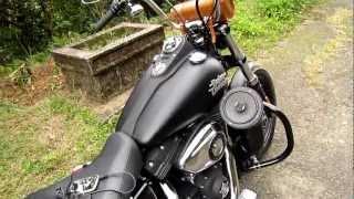 9. 2013 Harley-Davidson FXDB Dyna Street Bob Motorcycle Speaker (1)