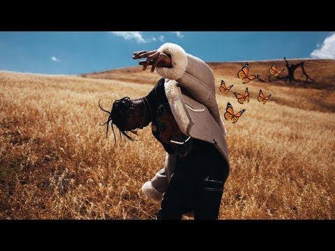 Travis Scott - Butterfly Effect (MUSIC VIDEO)