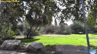 Ein Harod Israel  City pictures : Rundfahrt im Kibbuz Ein Harod im Norden Israels