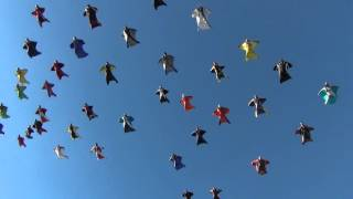 61 parachutistes en wingsuit battent le record de la plus grande formation aérienne
