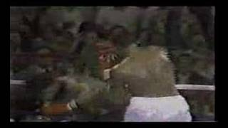 Larry Holmes Vs. Leon Spinks. Postfight Scuffle With Cooney