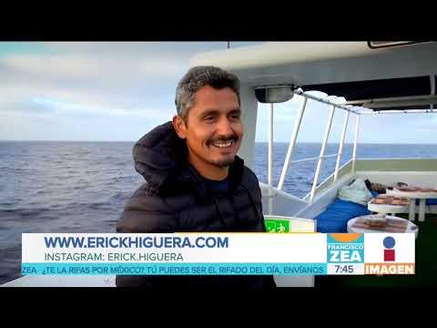 Biólogo mexicano captura la belleza de las ballenas jorobadas