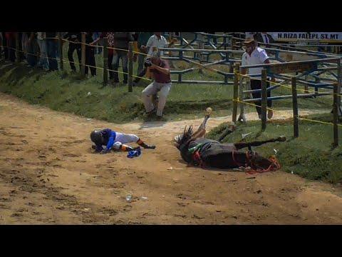 Insiden Horor Pacuan Kuda Payakumbuh 2020 di Kelas AB Perdana