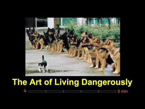 The art of living dangerously