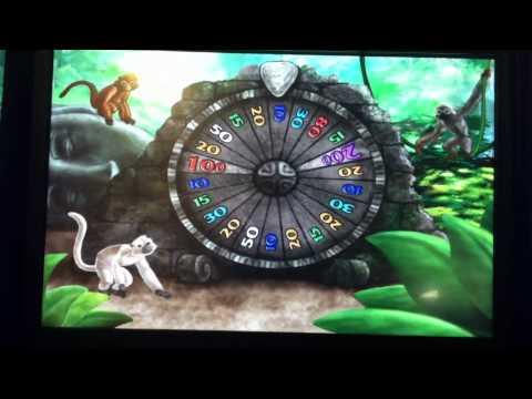 Amazin Slot Machine Bonus - Mad Monkey Fortune