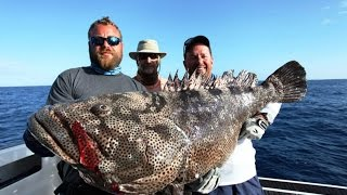 In September of 2014, Sami traveled with Dorian, George and Arthur to New Caledonia to fish with Powercat Charters, For 5 days...