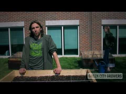 green city growers youtube video