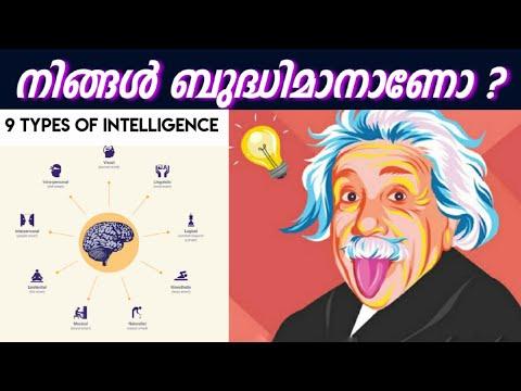 9 Types of Intelligence | നിങ്ങളുടേത് ഏത് Type ആണെന്ന് കണ്ടുപിടിക്കൂ !