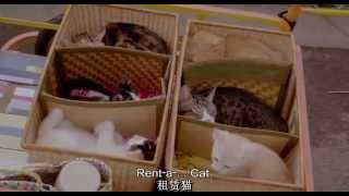 Nonton Rentaneko吉貓出租 Film Subtitle Indonesia Streaming Movie Download
